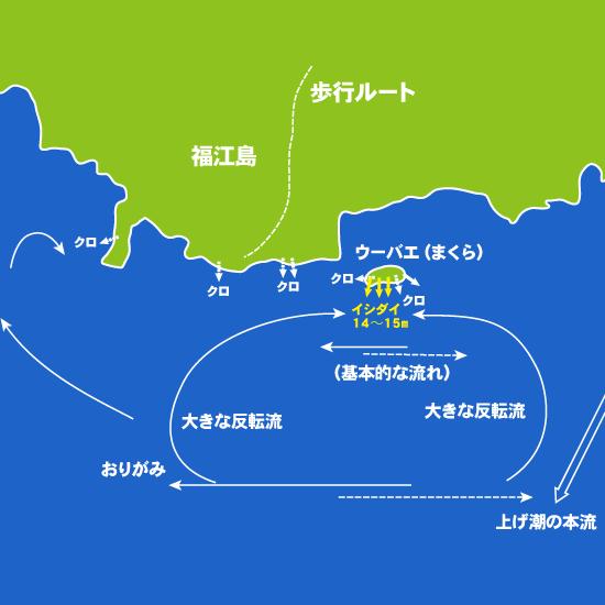 185 玉之浦・五社瀬、ウーバエ(まくら):大鳥丸