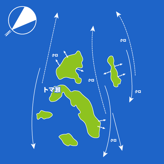 203 富江・トマ瀬:大和